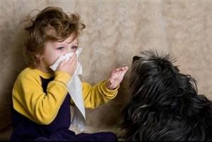 allergie chien