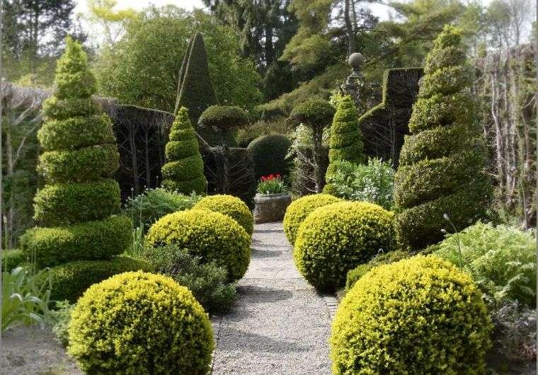 Exemple d'aménagement de jardin topiaire à la française