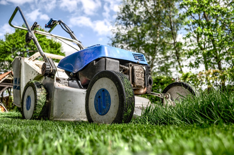 Une tondeuse à gazon pour entretenir sa pelouse